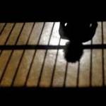 Mar de Fueguitos: Mujeres  encarceladas,  el  último  eslabón  de  la  fracasada  política  antidrogas