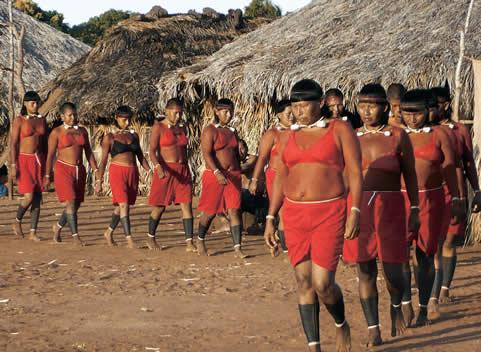Lur eta Murmur: COVID19 eta Brasilgo herri indigenak