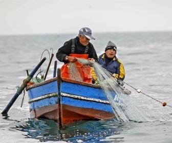 Lur eta Murmur: Pesca sostenible